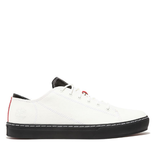 Adventure 2.0 Cupsole Sneaker for Men in White | Timberland