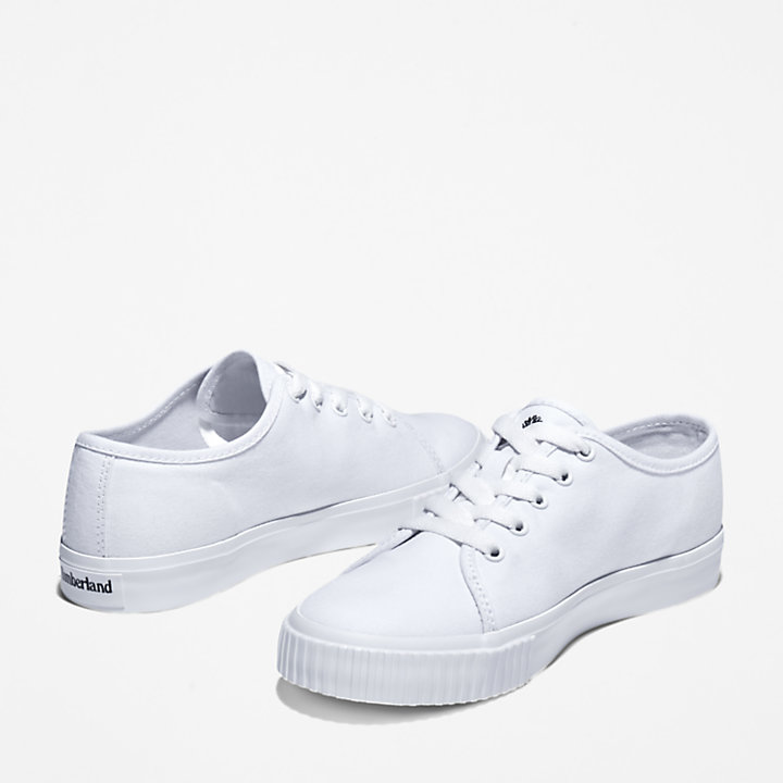 Skyla Bay Sneaker for Women in White-