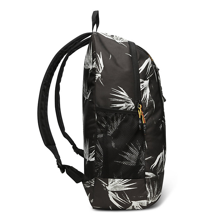 Crofton 23L Bungee Backpack in Multicoloured-