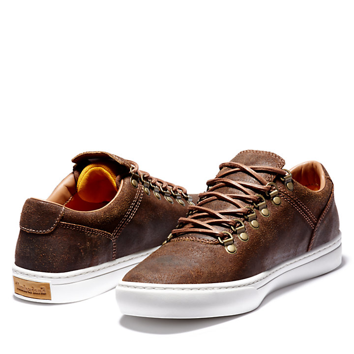 Adventure 2.0 Cupsole Alpine Sneaker for Men in Brown-