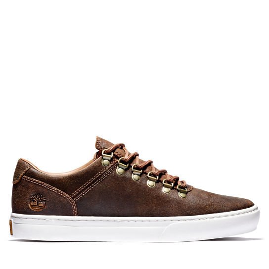 Adventure 2.0 Cupsole Alpine Sneaker for Men in Brown | Timberland