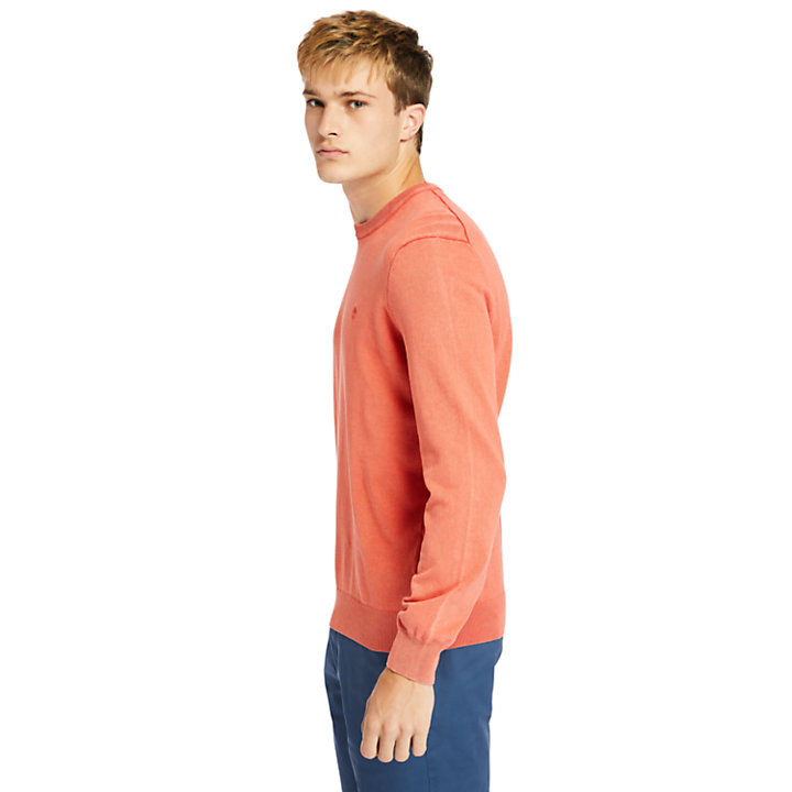 Felpa da Uomo garment-dyed in color corallo-