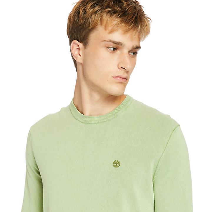 Stückgefärbtes Sweatshirt für Herren in Grün-