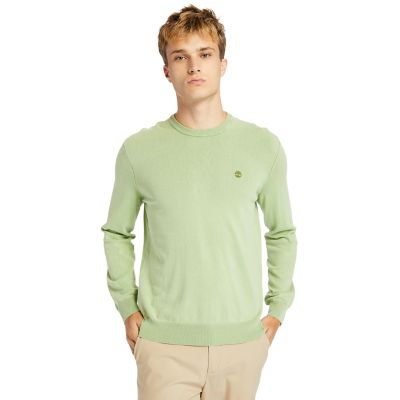 Garment-Dyed+Sweatshirt+for+Men+in+Green