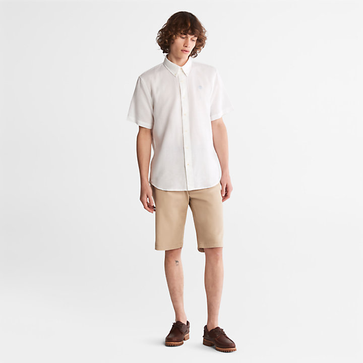 Shorts Chino da Uomo Squam Lake in beige-
