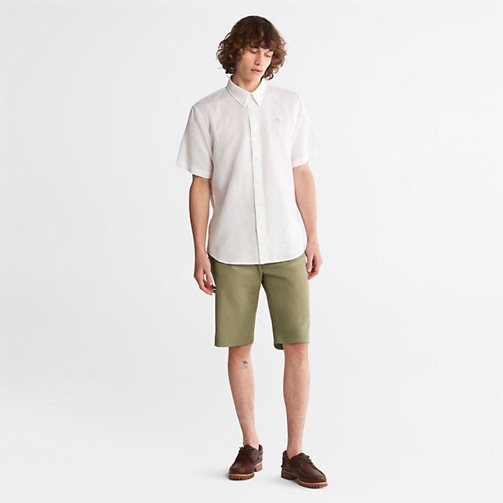 Short chino Squam Lake pour homme en vert-