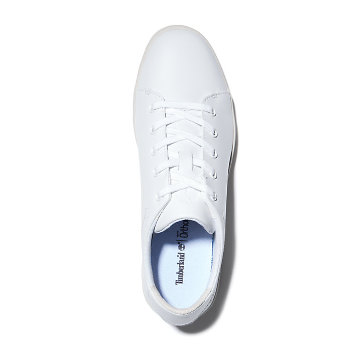 Dashiell Sneaker for Women in White-