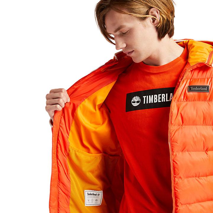 Garfield Hooded Puffer Jacket for Men in Orange-