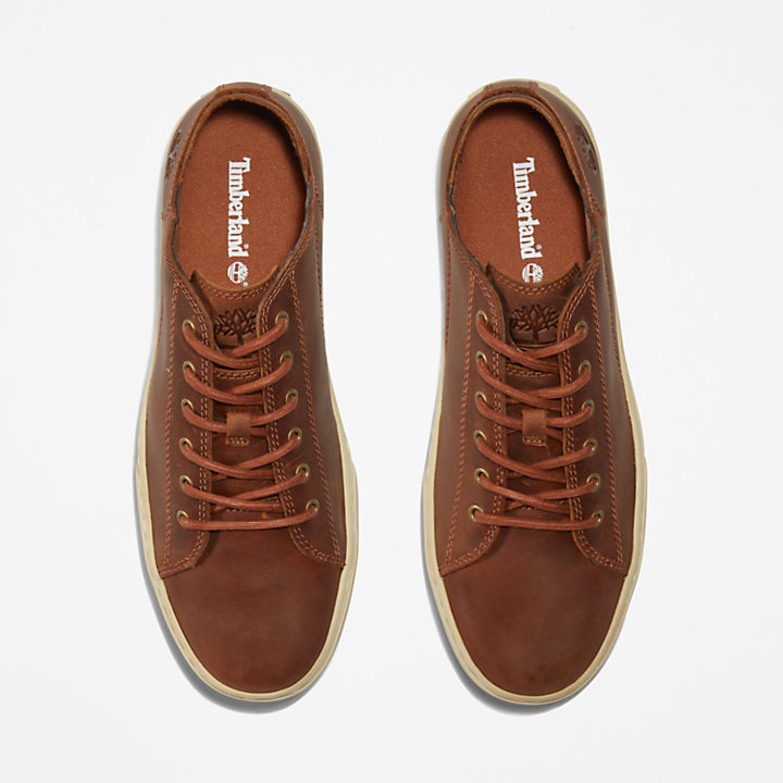 Sneaker da Uomo Adventure 2.0 in marrone-