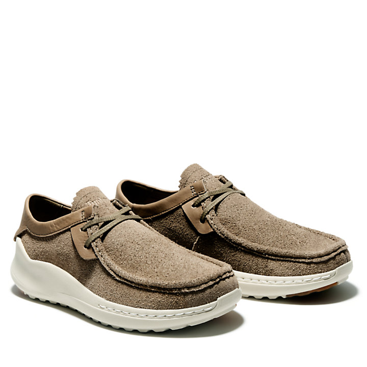 Project Better Oxford for Men in Brown-