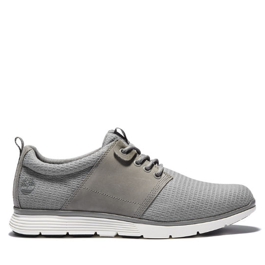 Killington Oxford for Men in Light Grey | Timberland