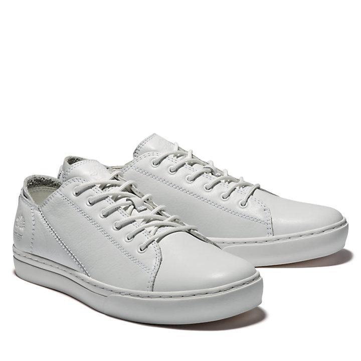 Adventure 2.0 Sneaker for Men in White-