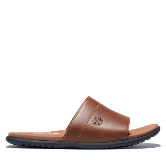 Kesler Cove Slide Sandal for Men in Brown | Timberland