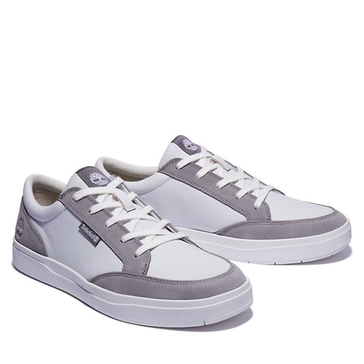 Davis Square Sneaker for Men in Grey-