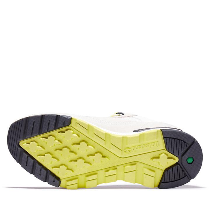 Chaussure de randonnée basse Field Trekker pour homme en gris-