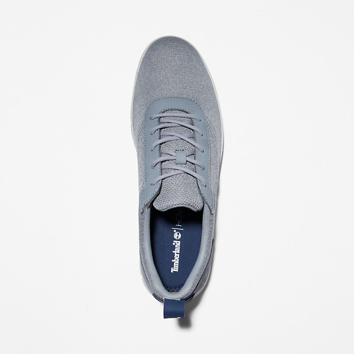 Graydon Canvas Sneaker for Men in Grey-