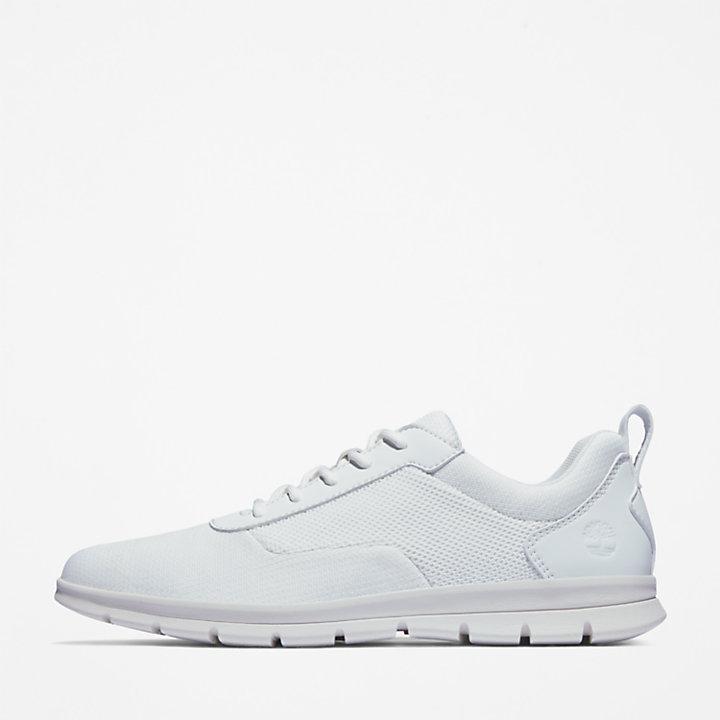 Graydon Canvas Sneaker for Men in White-