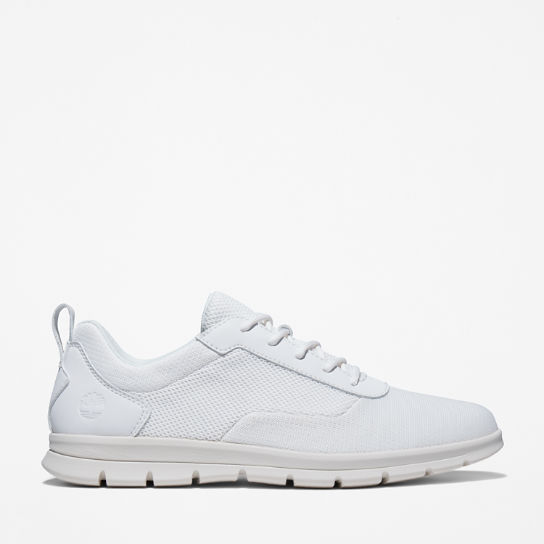 Graydon Canvas Sneaker for Men in White | Timberland