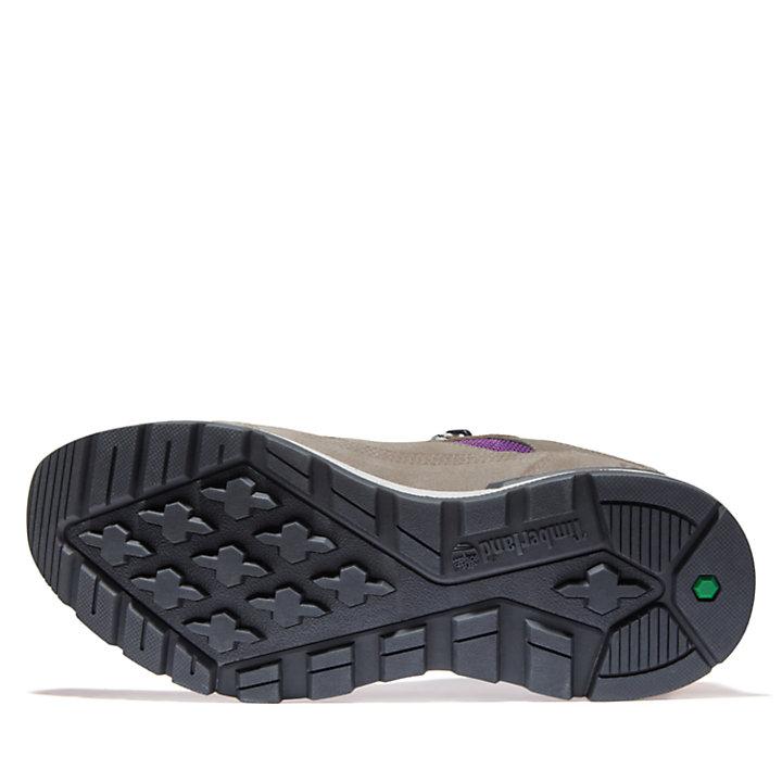 Chaussure de randonnée Field Trekker pour homme en beige-