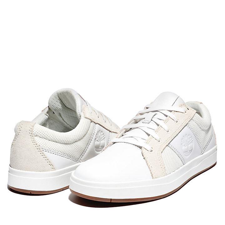 Davis Square Sneaker voor Heren in wit-