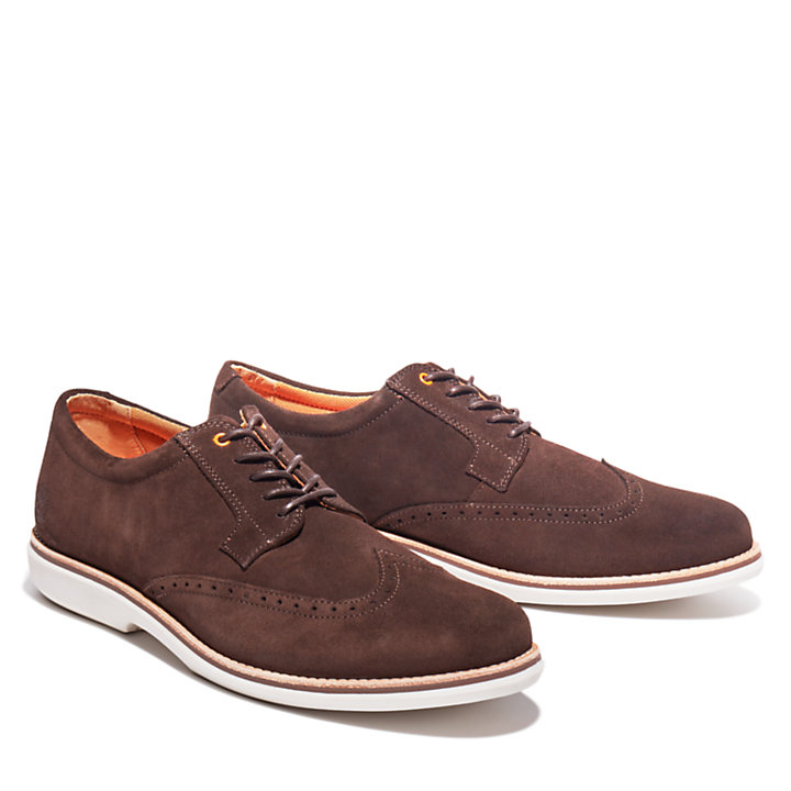 City Groove Brogue Oxford for Men in Brown-