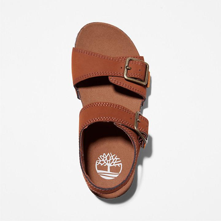 Castle Island Backstrap Sandal for Junior in Brown-