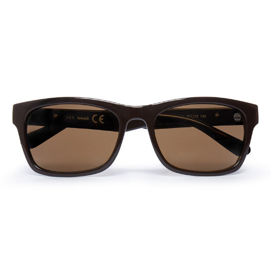 Retro Wayfarer Sunglasses for Men in Brown | Timberland