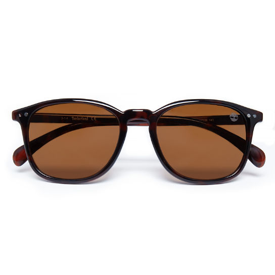 Sustainable Plastic Vintage Sunglasses Uomo Rosso | Timberland