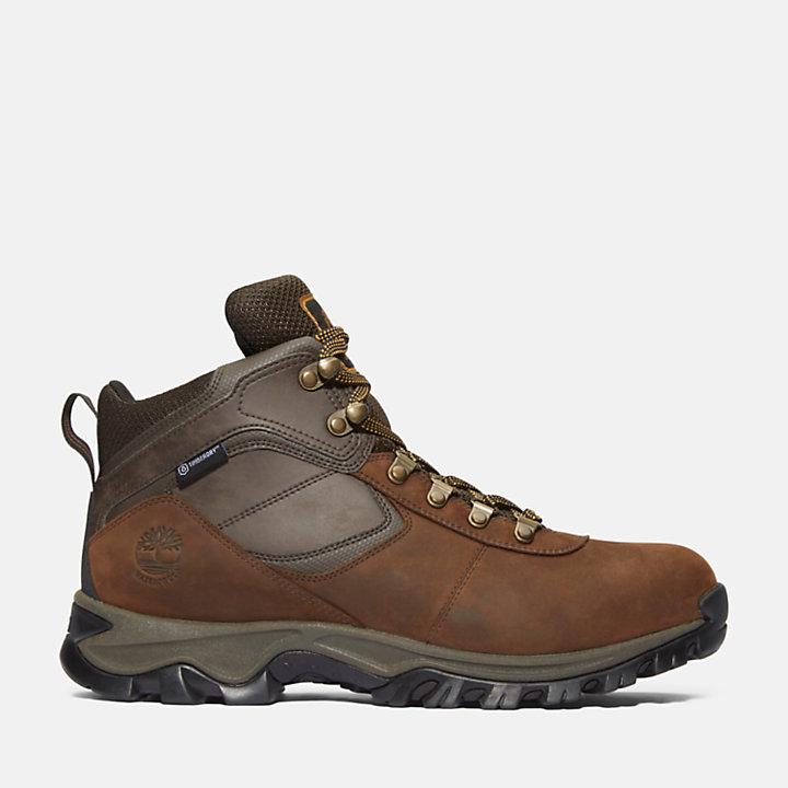 Boots MtMaddsen Men's Hiking Waterproof Mid xhQrCtds