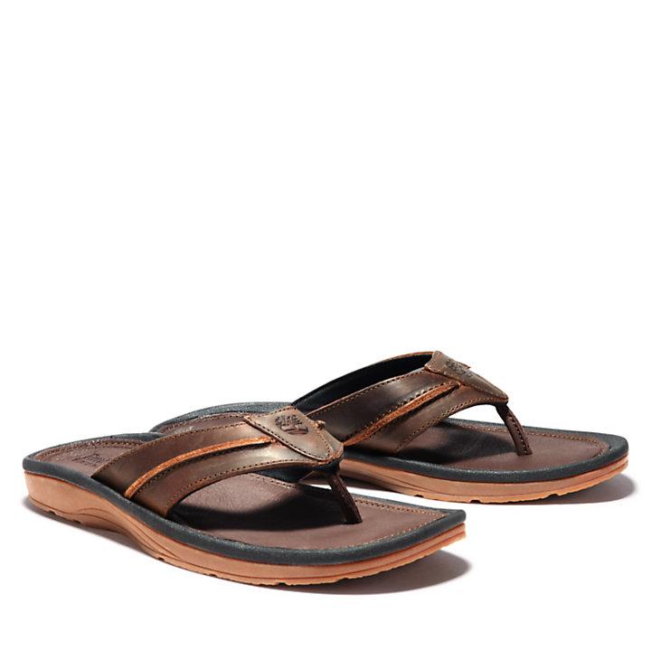 Men's Originals Thong Sandals-