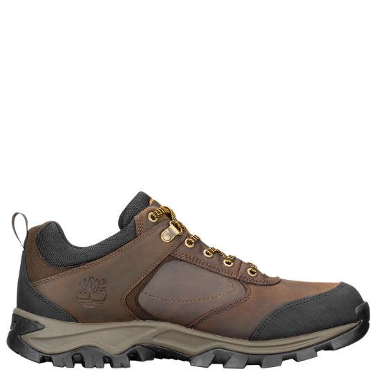 Men's Mt. Maddsen Low Waterproof Hiking Shoes