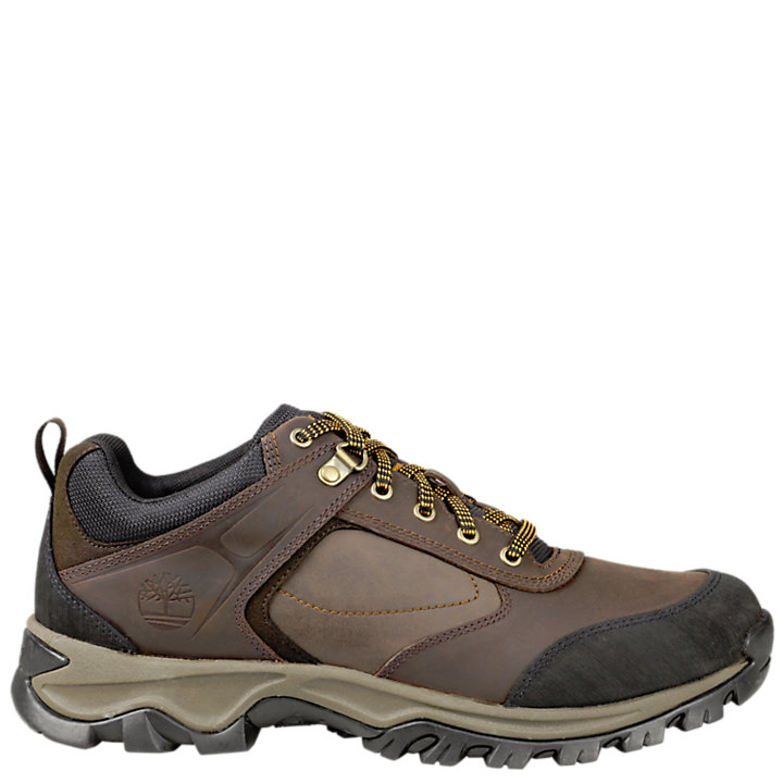 Men's Mt. Maddsen Low Hiking Shoes-
