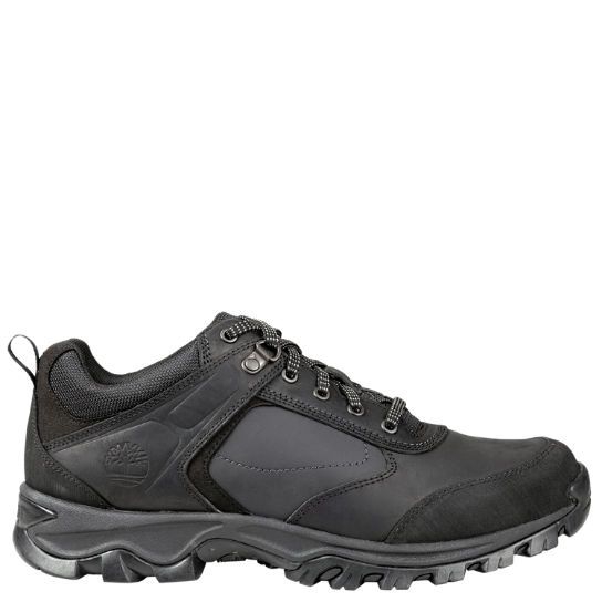 Men's Mt. Maddsen Low  Hiking Shoes