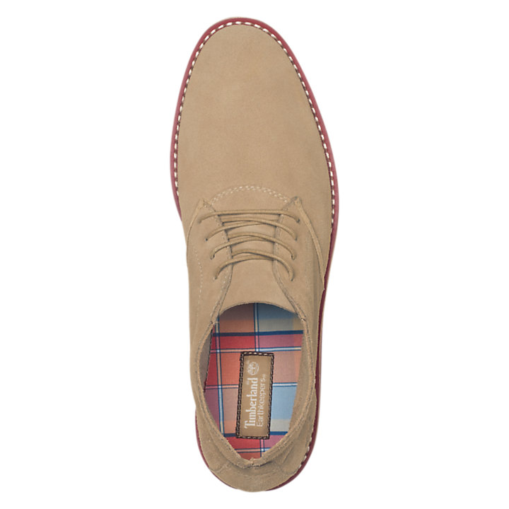 Men's Revenia Suede Chukka Shoes-