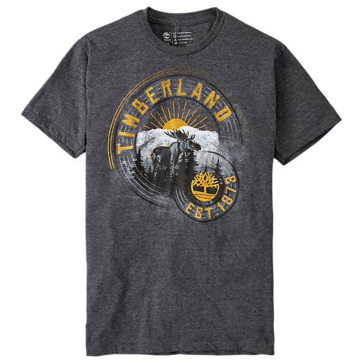 Men's Retro Mountain Graphic T-Shirt-