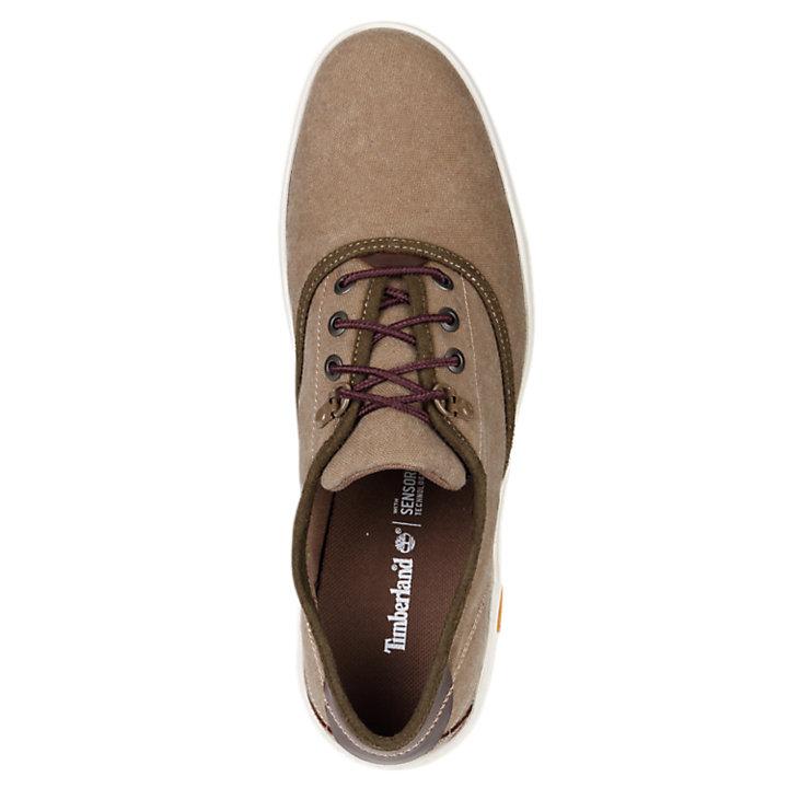 Men's Amherst Canvas Oxford Shoes-