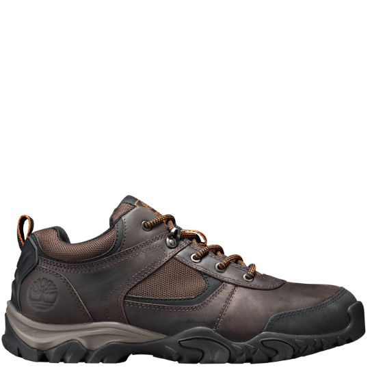Men's Mt. Abram Hiking Shoes