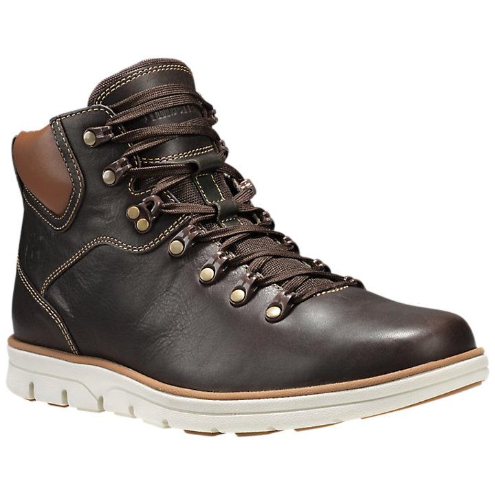 Men's Bradstreet Alpine Hiker Boots-