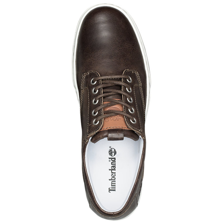 Men's Adventure Cupsole Leather Oxford Shoes-