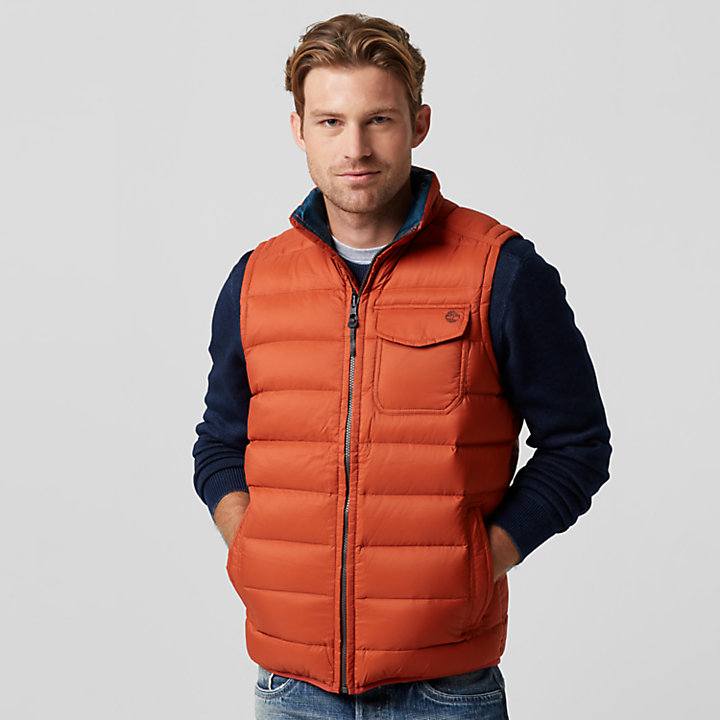 Men S Bear Head Packable Down Vest Timberland Us Store