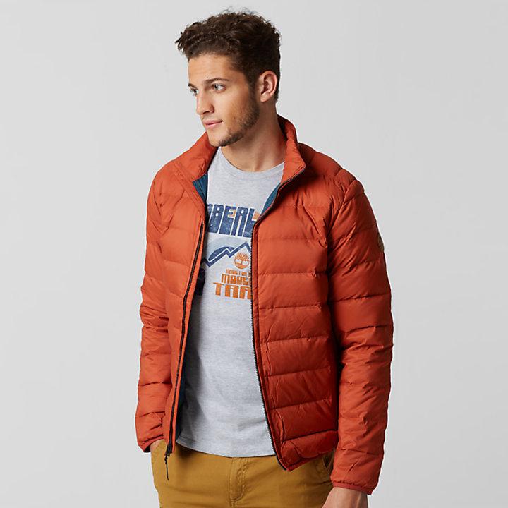 Men S Bear Head Packable Down Jacket Timberland Us Store