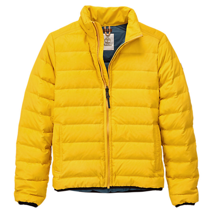 Details about Timberland Men's down Jacket Bear Head Yellow
