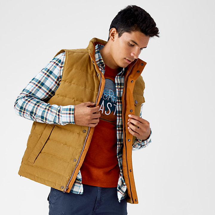 Men's Mount Davis Waxed Down Vest-
