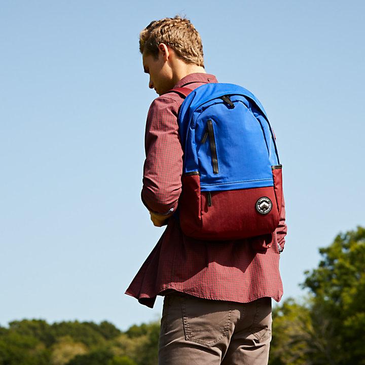 Ferndale 22-Liter Color Block Water-Resistant Backpack-