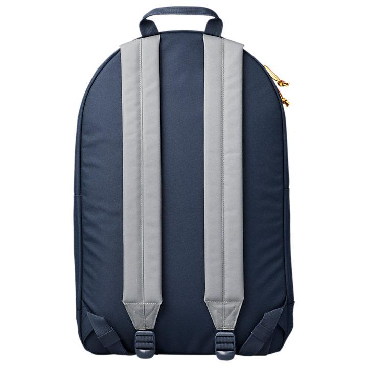 Thayer 28-Liter Color Block Backpack-