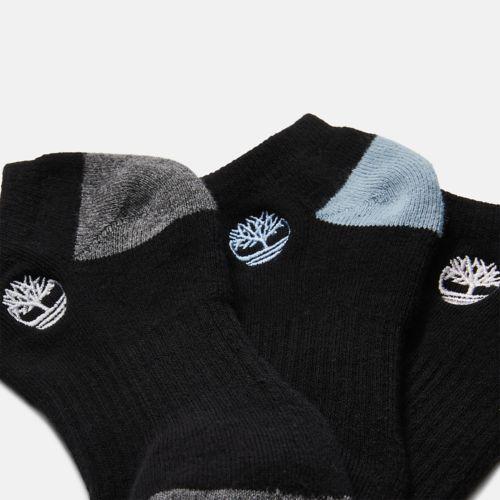 Women's 3-Pack Sagamore Beach No-Show Socks-