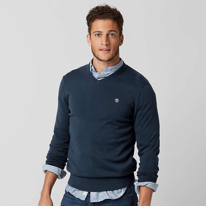 Men's Williams River V-Neck Sweater-