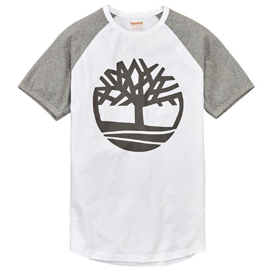 Men's Raglan Sleeve Tree Logo T-Shirt