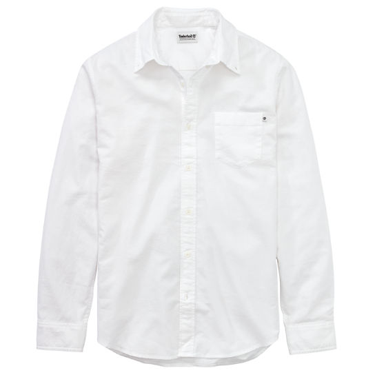 Men's Essential Button-Down Oxford Shirt