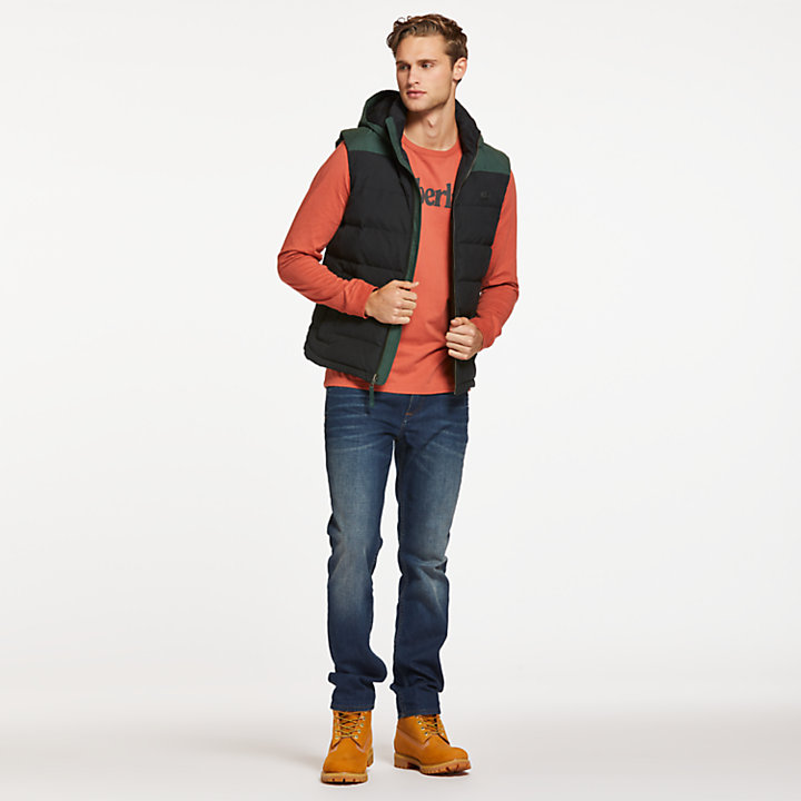 Men's South Twin Hooded Down Vest-